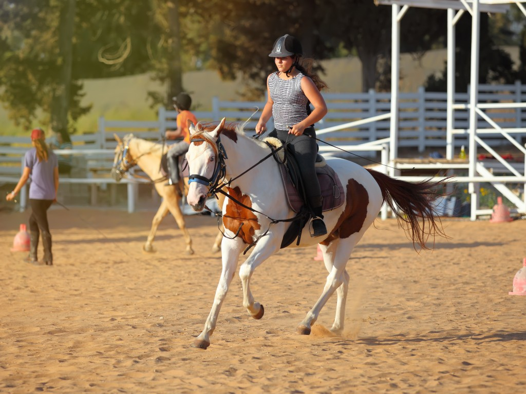 How To Get Started Riding Horses Ellwood City Memories