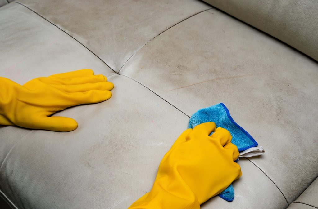person cleaning the sofa