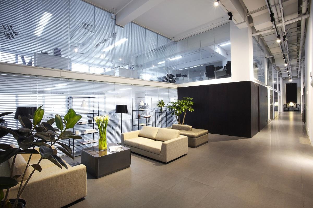 interior with indoor plants