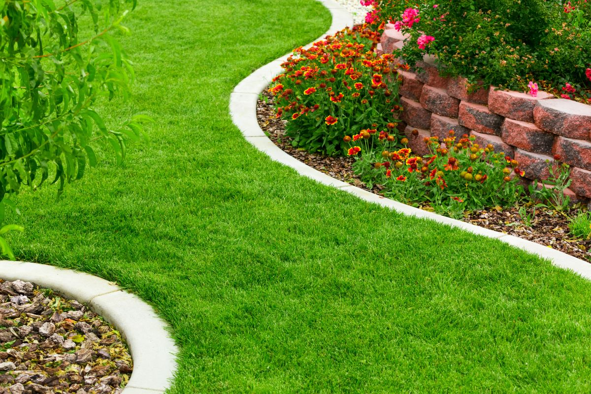 lawn with path